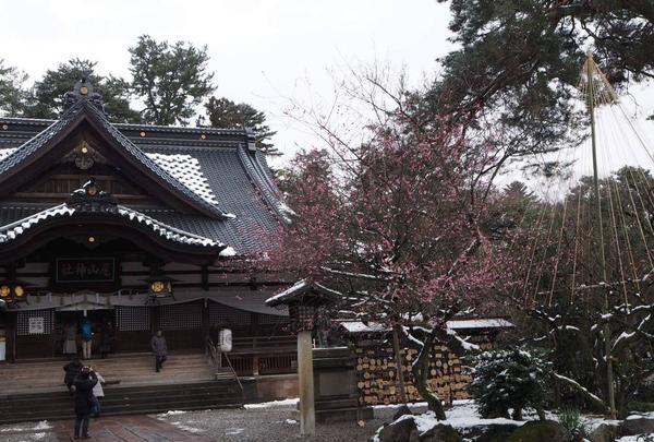 尾山神社の写真・動画_image_255342