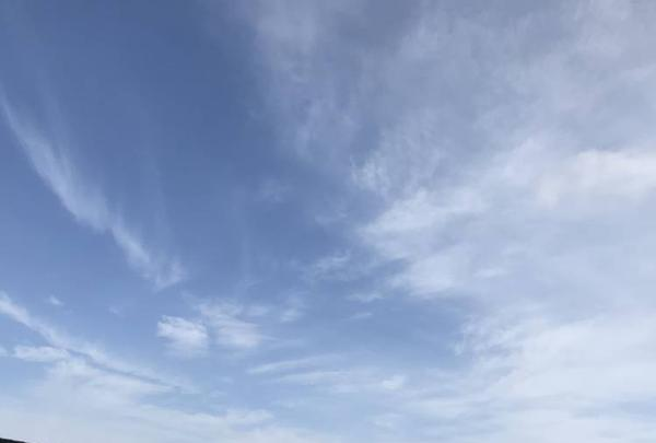 鳥羽マルシェの写真・動画_image_262369