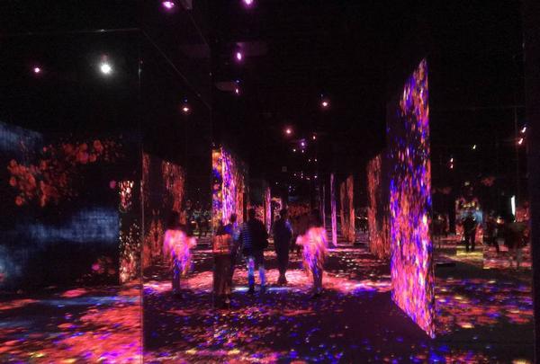 デジタルアート ミュージアム(MORI Building Digital Art Museum: EPSON teamLab Borderless)の写真・動画_image_262527
