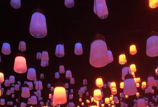 デジタルアート ミュージアム(MORI Building Digital Art Museum: EPSON teamLab Borderless)の写真・動画_image_262528
