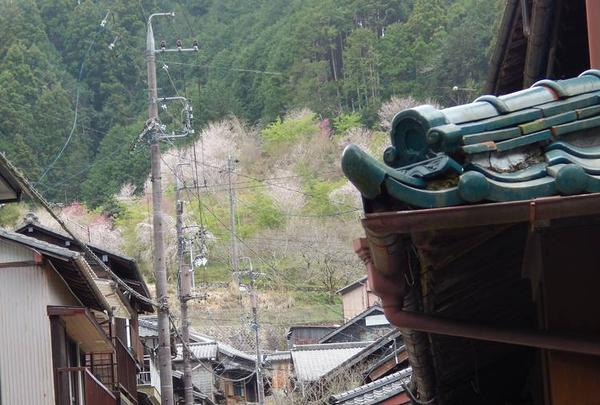 宇津ノ谷峠の写真・動画_image_267846