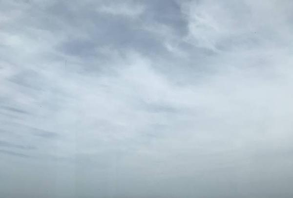 横須賀美術館の写真・動画_image_274897