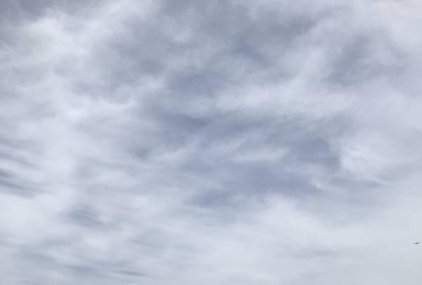 横須賀美術館の写真・動画_image_274898
