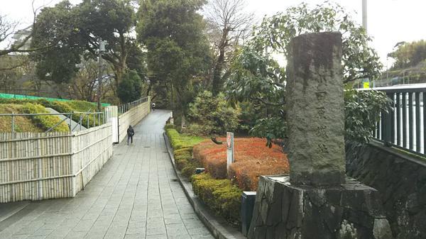 小田原城の写真・動画_image_277860
