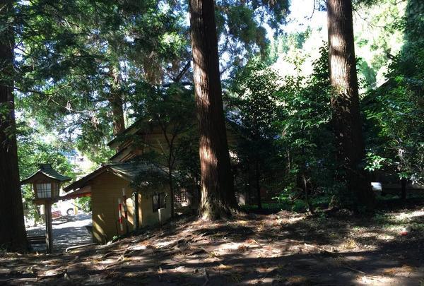 荒立神社の写真・動画_image_278375
