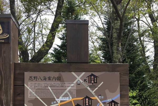 忍野八海の写真・動画_image_279488