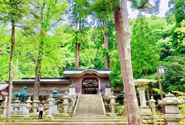 紙祖神岡太神社・大滝神社の写真・動画_image_283847