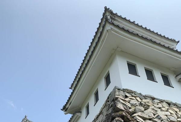 郡上八幡城の写真・動画_image_295393