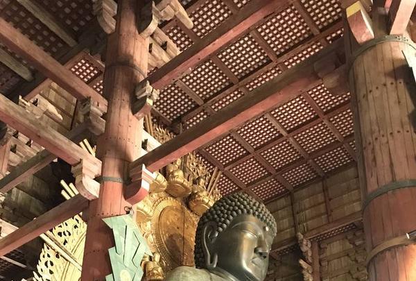 東大寺の写真・動画_image_299623