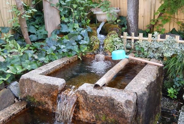 水の都大垣の湧き水の写真・動画_image_301332