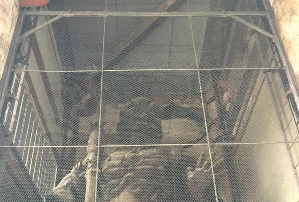 東大寺南大門金剛力士像の写真・動画_image_302044