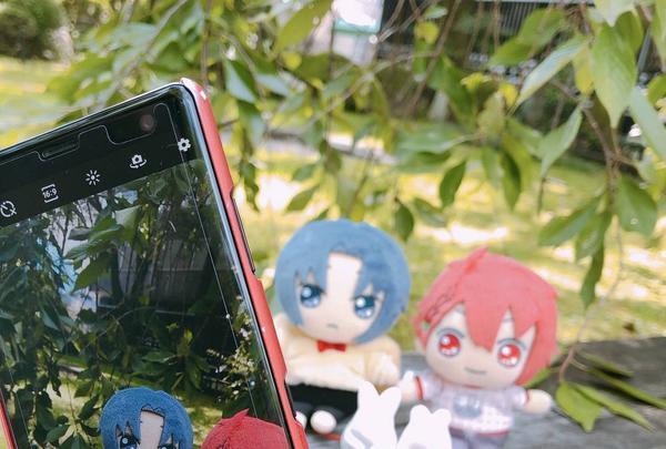 岡崎神社の写真・動画_image_304629