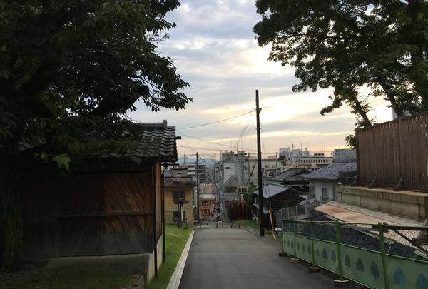 興福寺の写真・動画_image_306908
