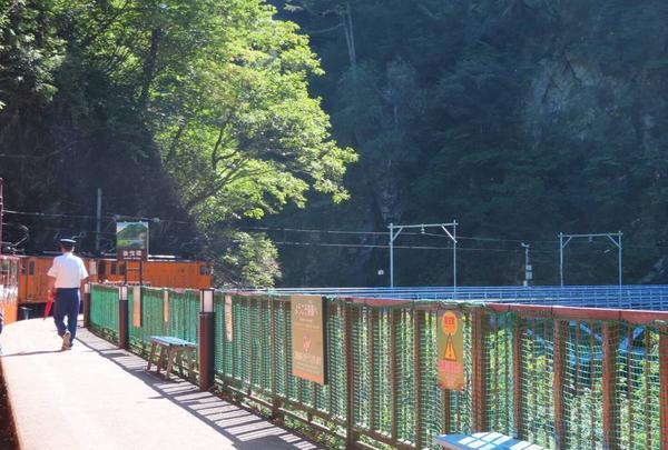 黒部峡谷鉄道の写真・動画_image_309087