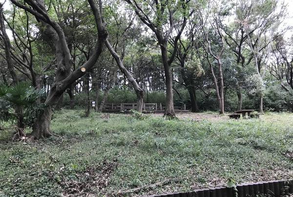 陣ケ下渓谷公園の写真・動画_image_310993