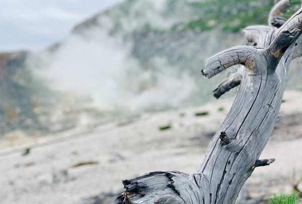 硫黄山の写真・動画_image_311170