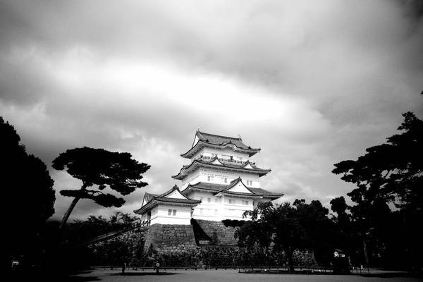 小田原城の写真・動画_image_315936