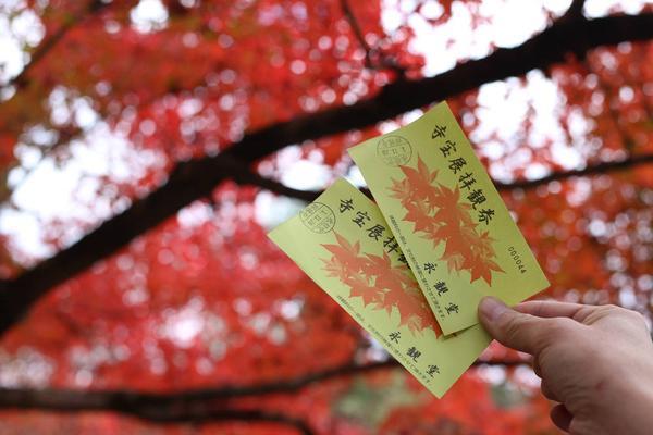 永観堂(禅林寺)の写真・動画_image_328194