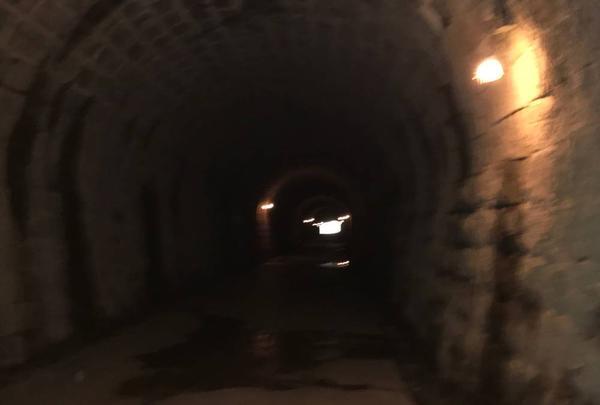 旧天城トンネルの写真・動画_image_330773