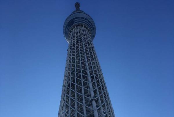 東京スカイツリーの写真・動画_image_330911