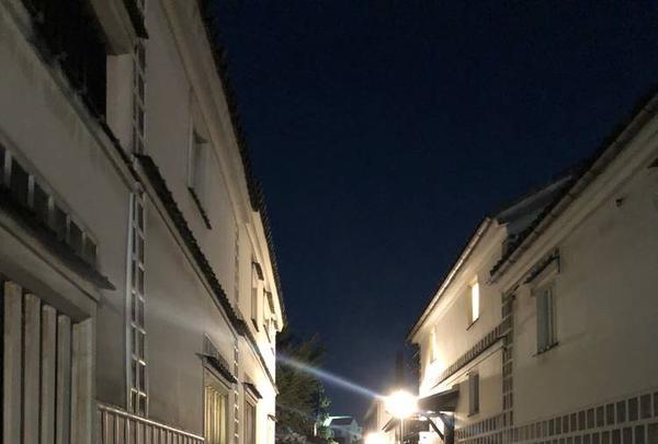 倉敷美観地区の写真・動画_image_331843