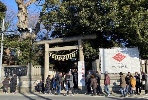 氷川神社の写真・動画_image_334834