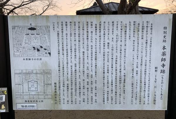本薬師寺跡 ホテイアオイの写真・動画_image_345076