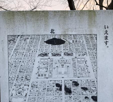 本薬師寺跡 ホテイアオイの写真・動画_image_345080