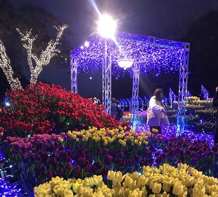 江の島サムエル・コッキング苑の写真・動画_image_349699