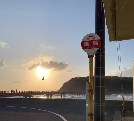雄島の写真・動画_image_352775
