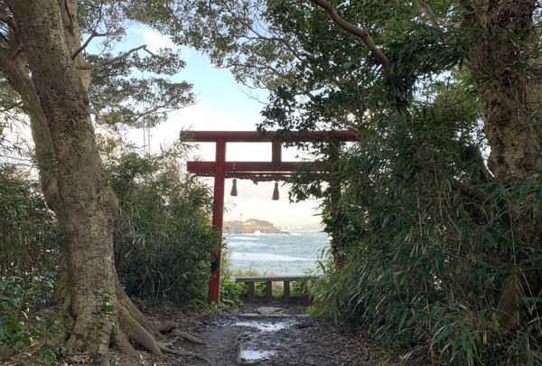 雄島の写真・動画_image_352780