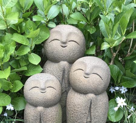 長谷寺の写真・動画_image_353764
