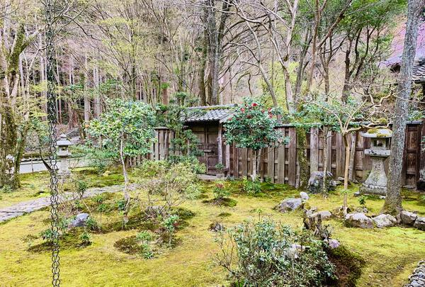 高山寺の写真・動画_image_356555
