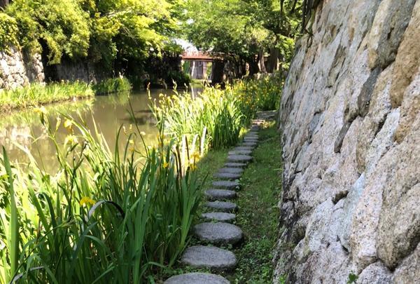 八幡堀の写真・動画_image_358132