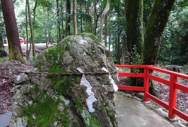 日吉大社 東本宮 本殿の写真・動画_image_360644