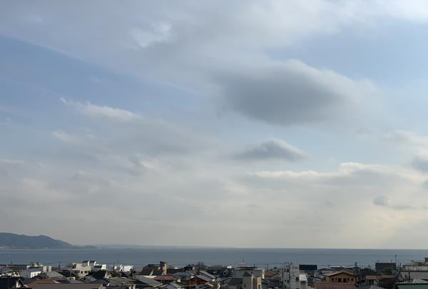 長谷寺の写真・動画_image_363152