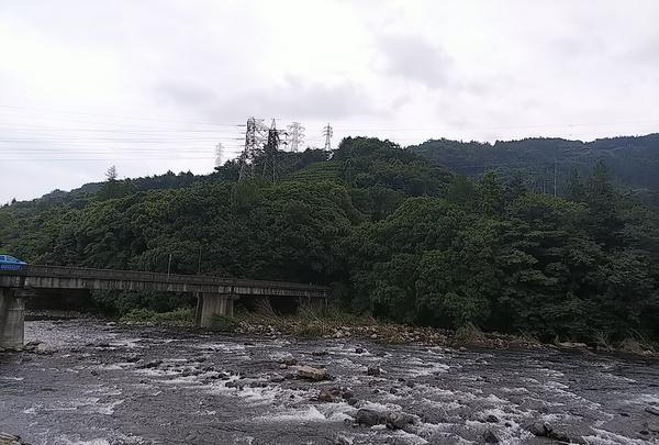 小田原漁港の写真・動画_image_363923