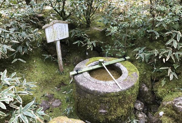 高桐院の写真・動画_image_372362