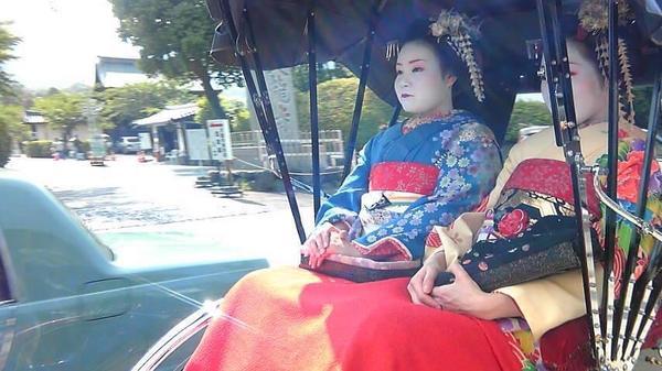 天龍寺の写真・動画_image_375831