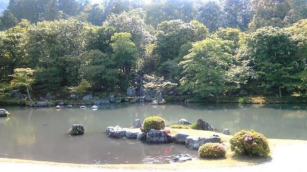 天龍寺の写真・動画_image_375889
