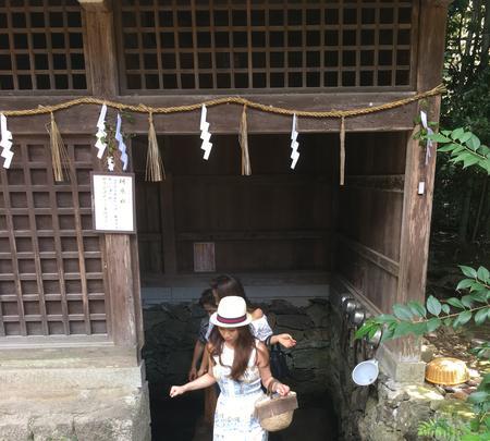 宇治上神社の写真・動画_image_375935