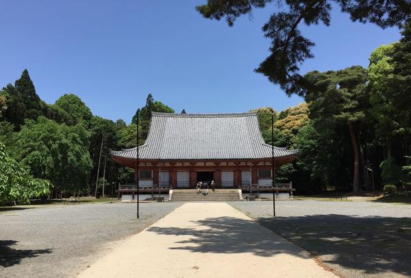 醍醐寺の写真・動画_image_378038