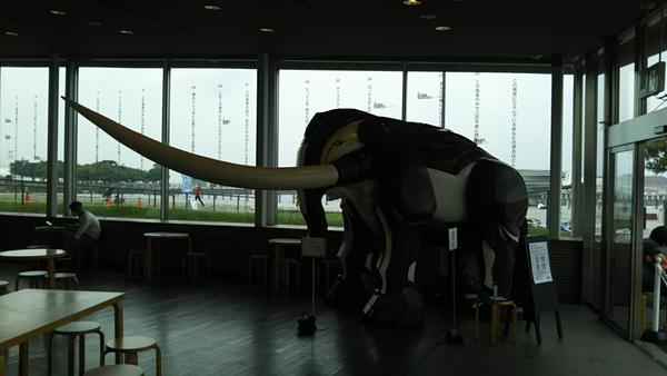 象の鼻テラスの写真・動画_image_386534