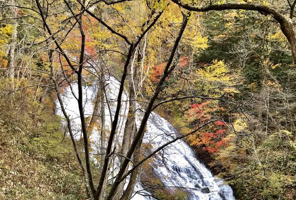 湯滝の写真・動画_image_389846