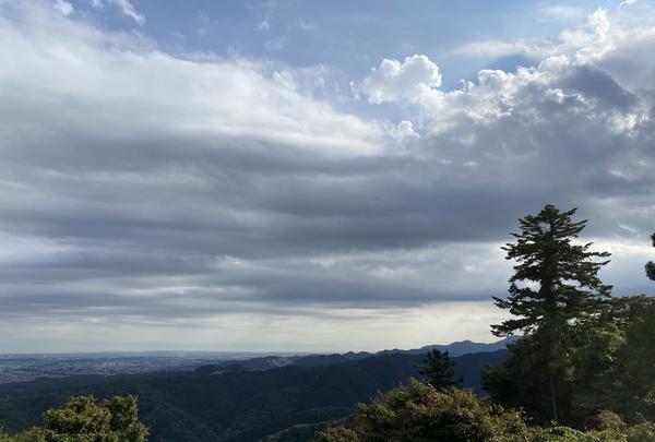 高尾山の写真・動画_image_391473