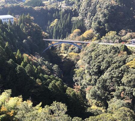 神橋の写真・動画_image_392372