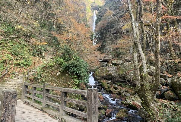 神庭の滝の写真・動画_image_403822