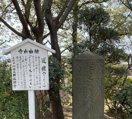 平間寺(川崎大師)の写真・動画_image_413892