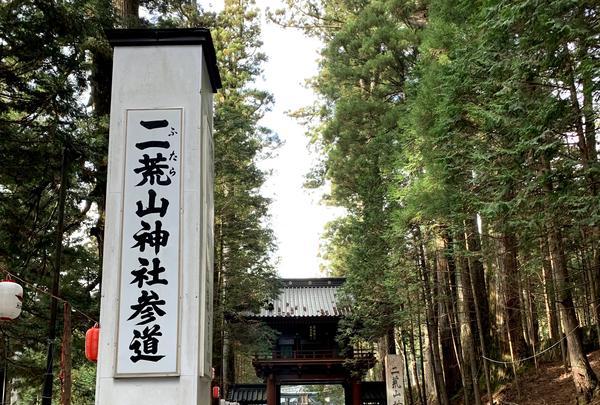 日光二荒山神社の写真・動画_image_414808