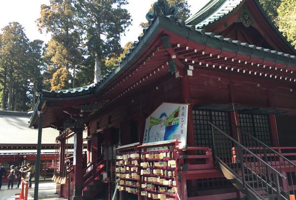 箱根神社の写真・動画_image_417236